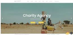 charity wp theme 6